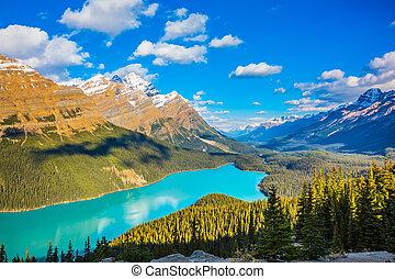 """Mountain Lake as a """"fox head"""" in Banff National Park"""