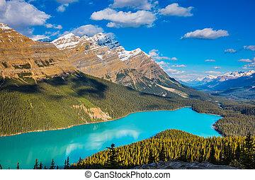 Lake Peyto in Banff National Park