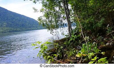 mountain lake beautiful and remote beaches. Teletskoye in...