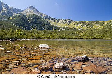 mountain lake in high tatras summer landscape