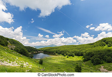 mountain lake in the green forest
