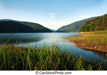 Mountain Lake in the green forest on blue sky background
