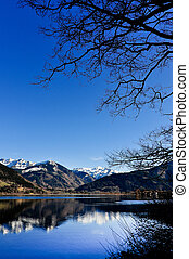 Mountain lake landscape view with tree and mountains reflection