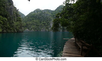 Mountain lake on a tropical island