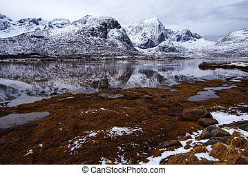 Mountain lake. Spring in the Lofoten Islands