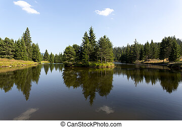 Mountain lake with pine tree forest