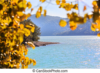 lake with yellow autumn leaves in the foreground