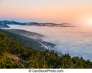 Mountain landscape at sunset time. Freezy evening and weather inversion, Giant Mountains, aka Krkonose, Czech Republic