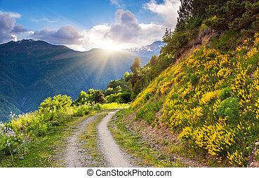mountain landscape - Beautiful view of alpine meadows. Upper...