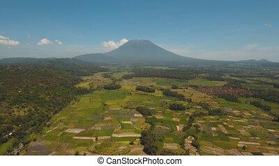 Mountain landscape farmlands and village Bali, Indonesia. -...