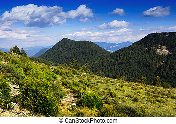 mountain landscape in cloudy summer day