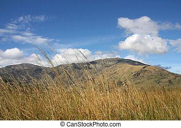 Mountain landscape in Otago region of New Zealand
