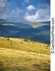 Mountain landscape in Parang Mountains, Transalpina, Romania