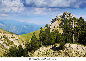 mountain landscape in summer