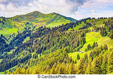 Mountain landscape in the Allgäu