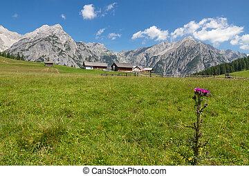 Mountain landscape in the Alps near Walderalm, Austria, Tirol