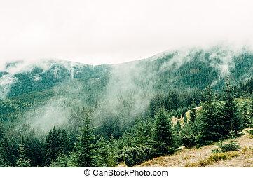 mountain landscape in the autumn fog