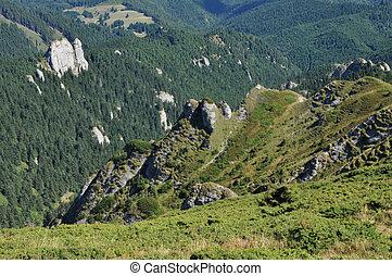 Mountain landscape in the Carpathia