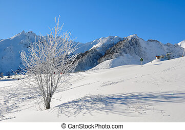 mountain landscape in winter in a ski resort