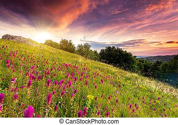 Majestic sunset in the mountains landscape. Dramatic overcast sky. Crimea, Ukraine, Europe. Beauty world.