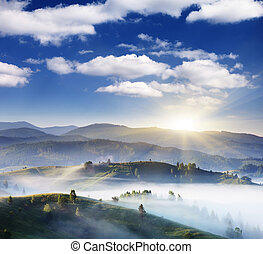 mountain landscape - Morning mist cover tree and mountain in...