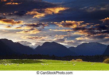 Mountain landscape, New Zealand - Mountain landscape at ...