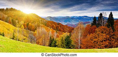 mountain landscape - the mountain autumn landscape with...