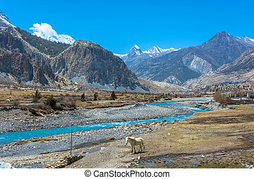 Mountain landscape with Bagmati river, Nepal. - Beautiful...