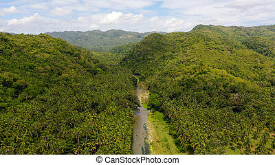 Mountain landscape with rainforest, aerial view. A river in the mountains on Leyte Island, Philippines.