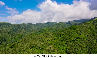 Mountain landscape with rainforest, aerial view. Mountains on the island of Luzon, Philippines.