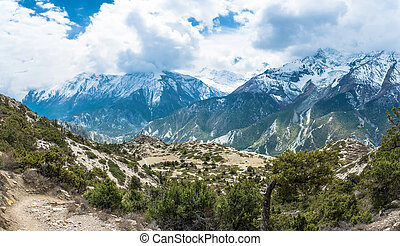 Mountain landscape with trees, bushes and snowy mountains,...