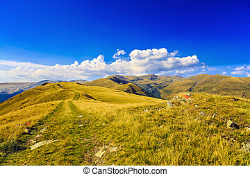 mountain landscape with yellow grass plateau