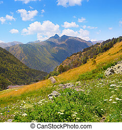 Mountain landscape,meadow, hiking trail and beautiful sky.