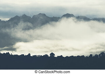 mountain layers with fog