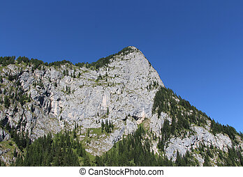 Mountain massif, green forest and blue sky.
