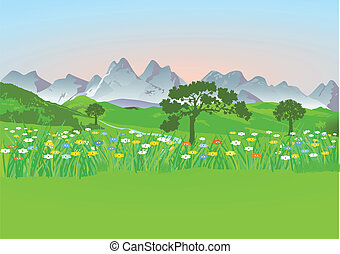 Mountain meadow with mountains