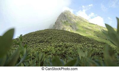 Mountain nature panoramic landscape in caucasus mountains...