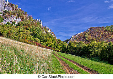 Mountain nature - track to canyon