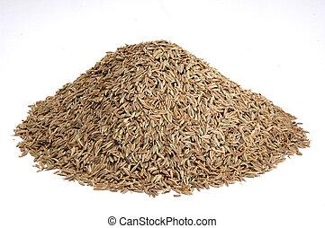 mountain of asian spice cumin seeds