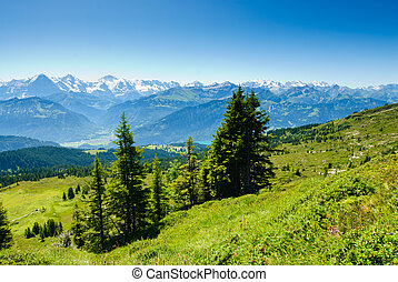 Panorama from Niederhorn in summer, with Eiger Moench and Jungfrau mountain peaks, Switzerland