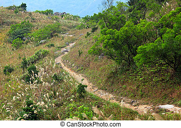 mountain path for hiking