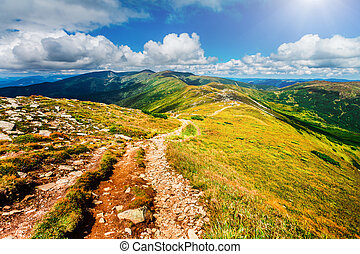 Mountain path in Carpathians, Ukraine. - Trail leading ...