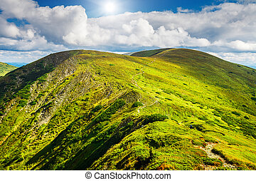 Mountain path in Carpathians, Ukraine. - Trail leading...