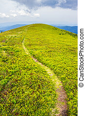 mountain path uphill to the sky - road; up; hill; dream;...