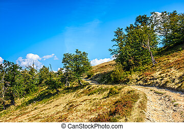 mountain path uphill to the sky - summer landscape. mountain...