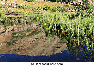 mountain pond reflection