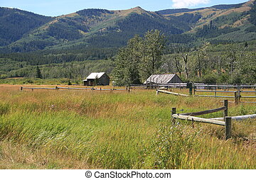 Abandoned ranch and buildings in southwestern Alberta; close to mountains; surrounded by grazing land; fences; early fall, sunshine, blue sky