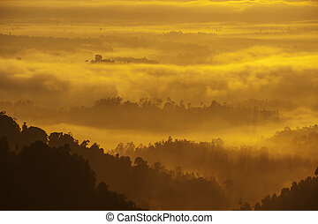 Mountain range in fog