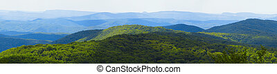 View of woody mountain range landscape. Panoramic image.