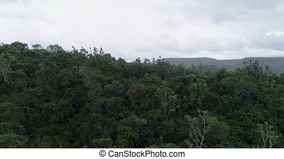 Mountain ranges covered with forest 4k - Vast mountain...